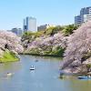 chidorigafuchi_sab1